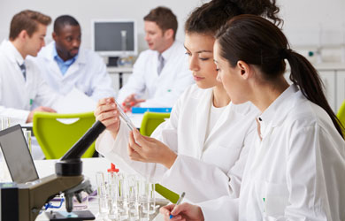 Group of Technicians Working in a Laboratory